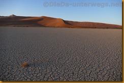 Namibia3457