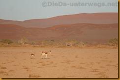 Namibia3492