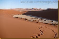 Namibia3519
