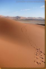 Namibia3523