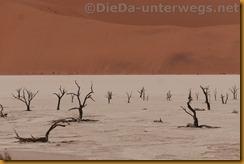 Namibia3710