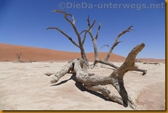 Namibia3720