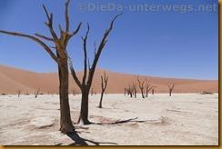 Namibia3722