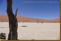 Namibia3751