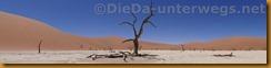 Namibia3762
