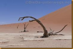 Namibia3763