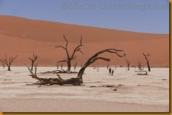 Namibia3767