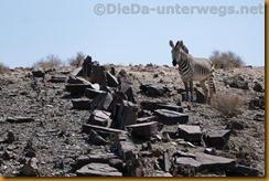 Namibia4576