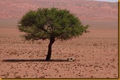 Namibia3053