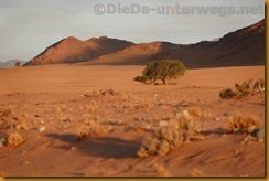 Namibia3084