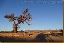 Namibia3143