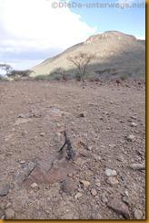 Namibia4844