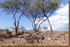 Namibia4848