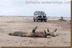 Namibia5217