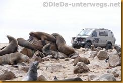 Namibia5286