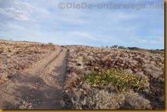 Namibia5546