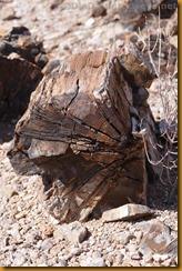 Namibia5607