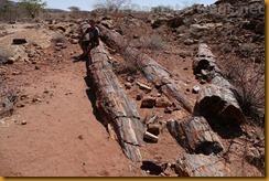 Namibia5613