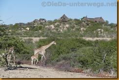 Namibia5699