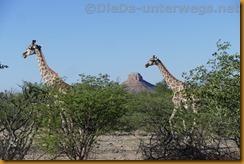 Namibia5710