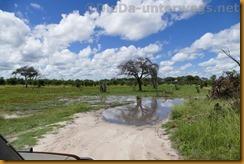 Botsuana2002