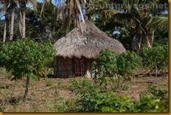 Mosambik0376