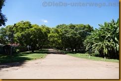Simbabwe3209