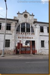 Mosambik0555
