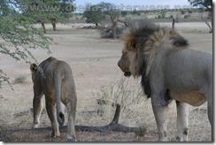 Botswana2912