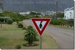 Südafrika13297