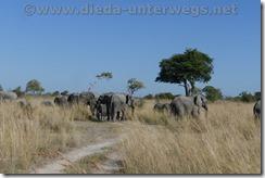 Namibia7511