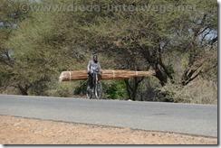 Malawi254