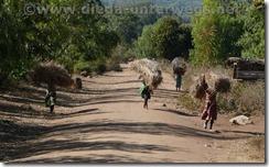 Malawi739