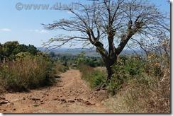 Malawi791