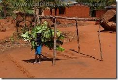 Malawi807