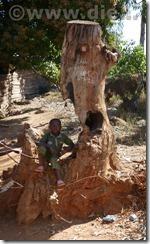 Malawi862