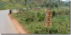 Burundi240