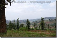 Rwanda001