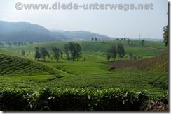 Rwanda238