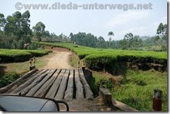 Rwanda241
