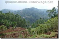 Rwanda246