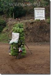 Rwanda302