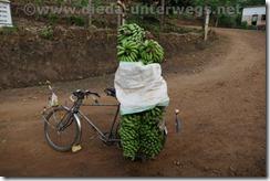 Rwanda304