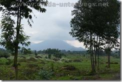Rwanda605