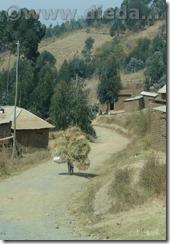 Tansania033