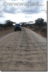 Kenia599