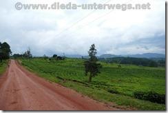 Uganda1062