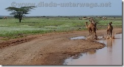 Kenia1978