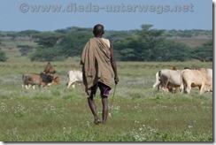 Kenia2008