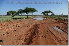 Kenia2036